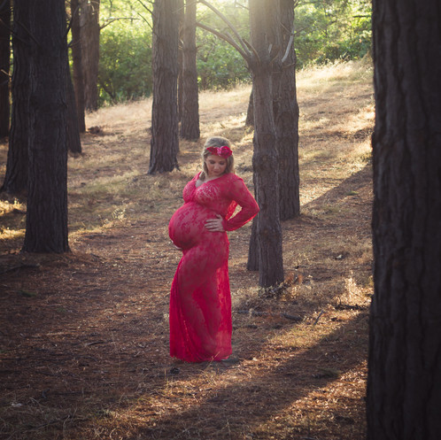 Backlit maternity photograph in forest