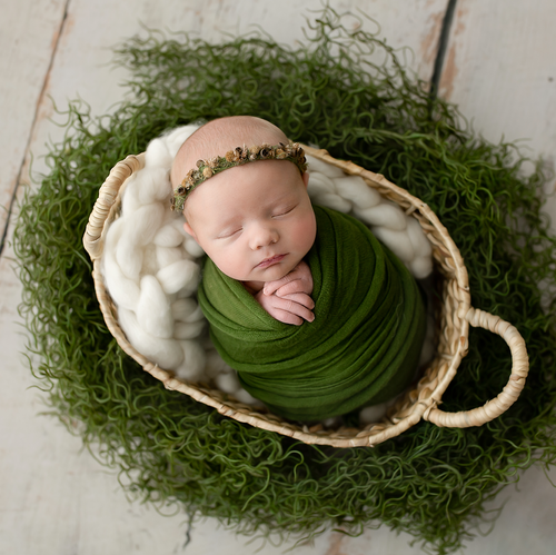 Newbonr baby sleeping in rattan basket with foliage around