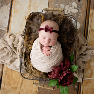 Newborn baby girl on rose themed background