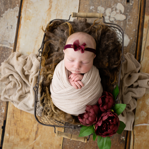 Newborn baby girl on rose themed background