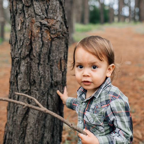 Little boy playing with stick next to tree trunk