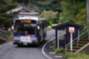 bus 11339.JPG