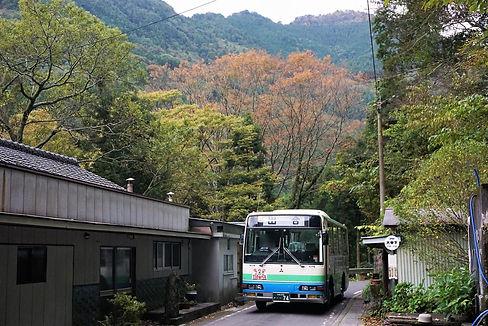WMQF9438 (2) ぼかし.JPG