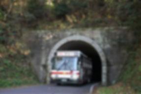 bus 11055 (2).JPG