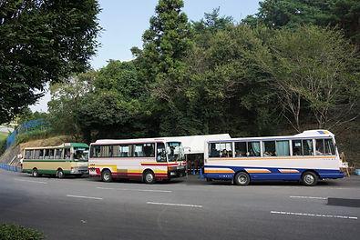bus 10011 (2).JPG