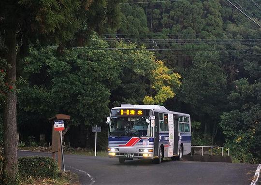 MXPN7337 (2) ぼかし.JPG