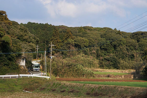 OZYK7102 (2) ぼかし.JPG