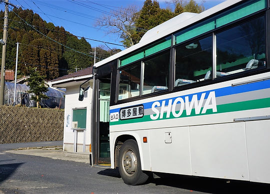 bus 11951 (2).JPG