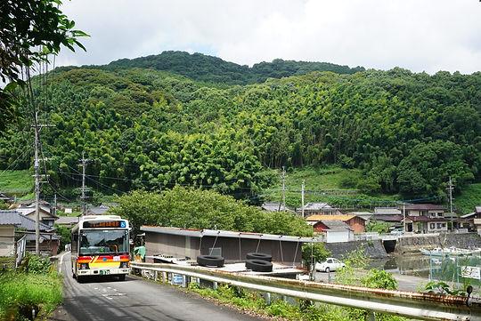 bus 12893.JPG