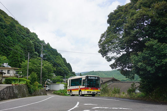 bus 12909_edited.jpg