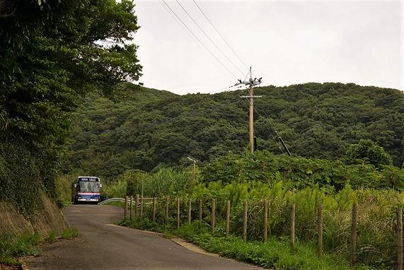 bus 10303 (2) ぼかし.JPG