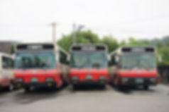 bus 7893 (2).JPG
