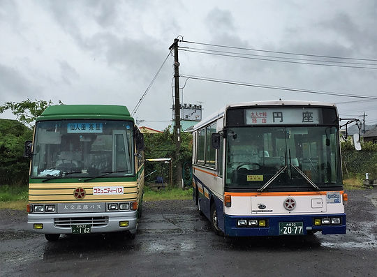 bus 1484(2).jpg
