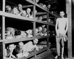 Escravos de trabalho