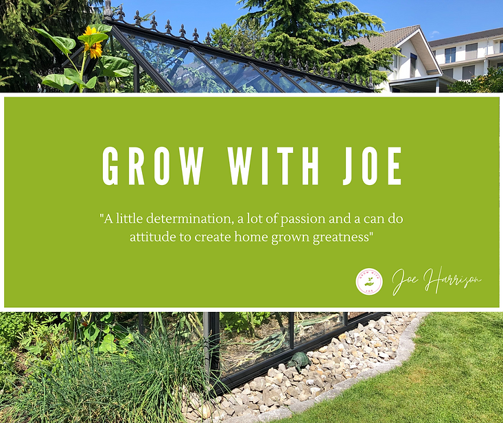 Copy of Copy of Copy of Grow With Joe (5