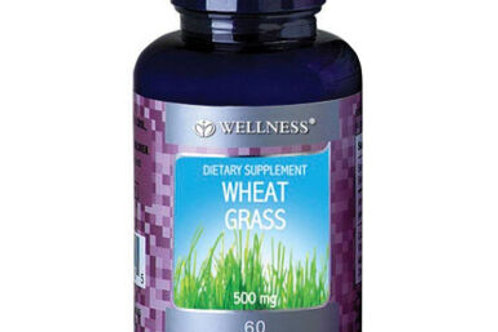 Wheat Grass by Wellness 60Tabs
