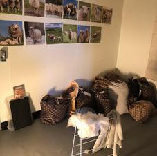 Raw Fleece (and Sheep Study) Room