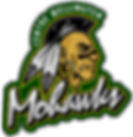 Centre Wellington Mohawks Lacrosse