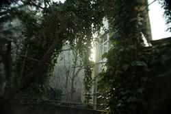 Çadır Atölye Arka Bahçe