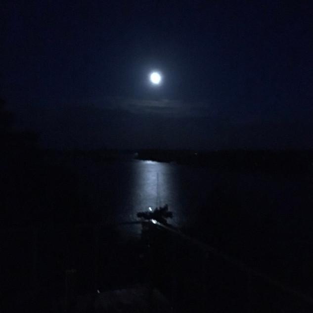 Månelyst