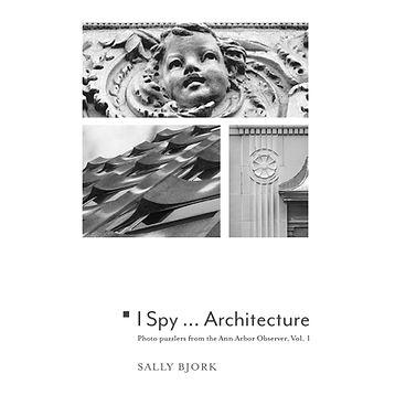SBjork_I-Spy-cover_sq_tinyexpo2020.jpg