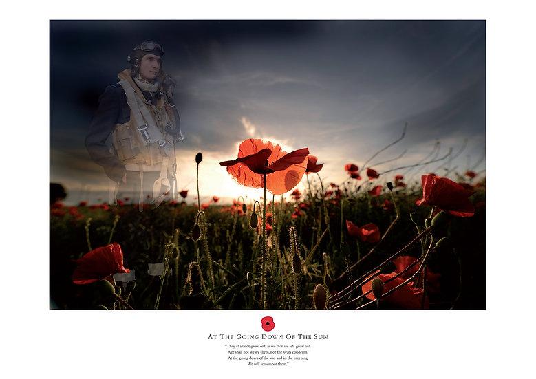 Remembrance Airman Print