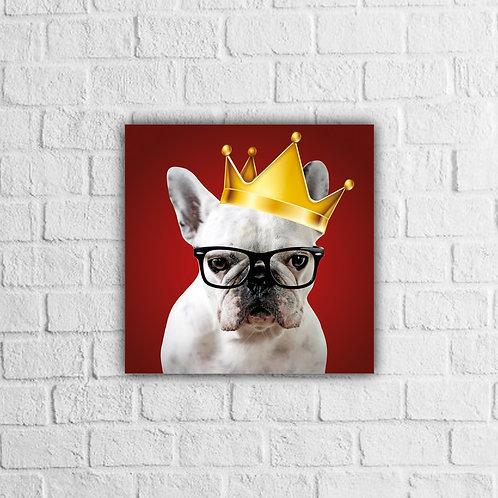 Placa Decorativa Cachorro Rei