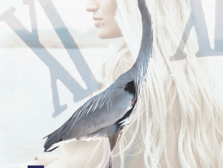 Blog Tour: The Heron, by Jean M. Roberts, April 15th – June 17th 2021