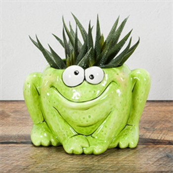 Quirky Frog Planter