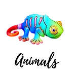Animals (1).png