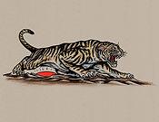 Rising Tiger