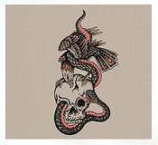 Eagle Snake Skull