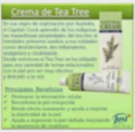 Crema de Tea Tree Beneficios.jpg