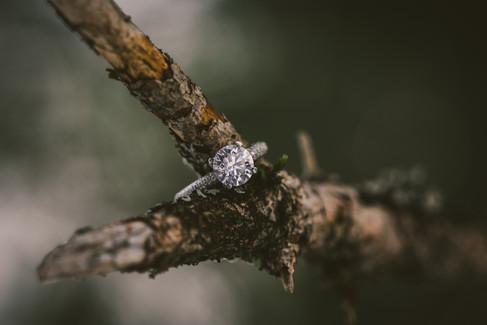 Engagement-089.jpg