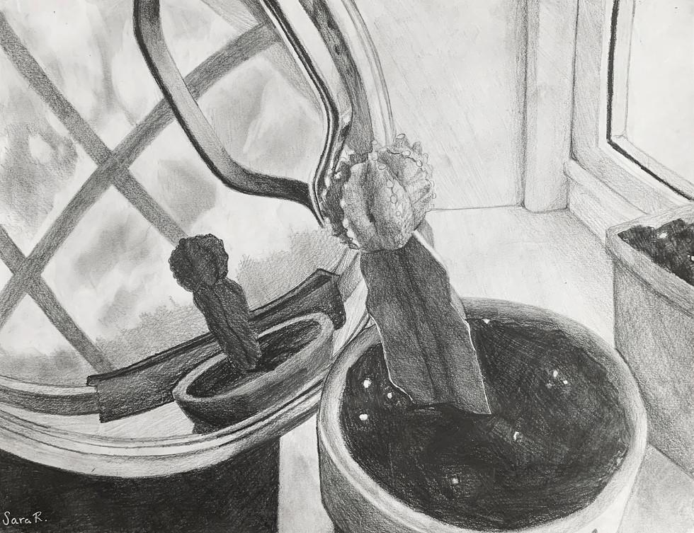 Sara Robinson - Le reflet (Graphite)