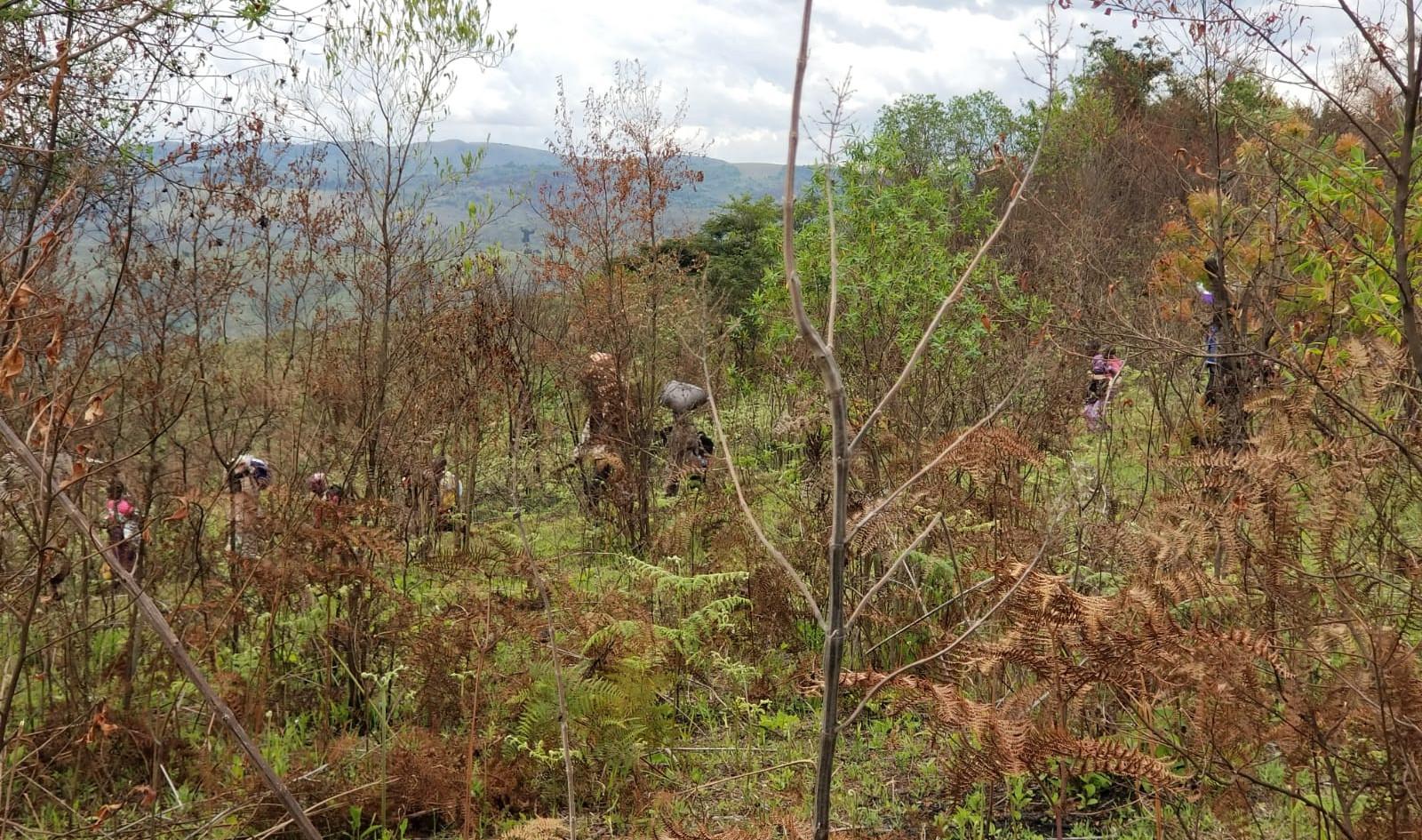 Les déplacés de guerre Banyamulenge