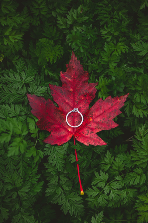 Engagement-2020-050.jpg