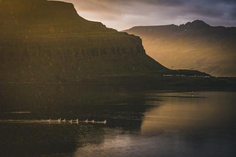 Iceland2017-DSC_8461.jpg