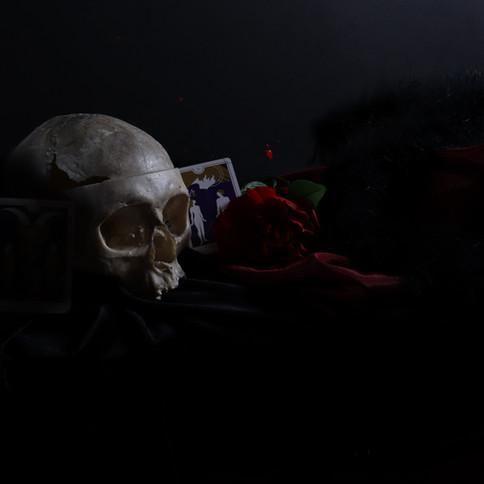9-9 Audrey_Duchesneau_Nature morte - Mis