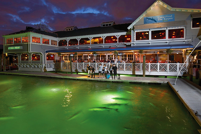 The Lauderdale Marina boat basin at the Fisheries dock where guests are feeding the tarpon fish in the glowing water below