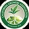 CGA_Logo.png