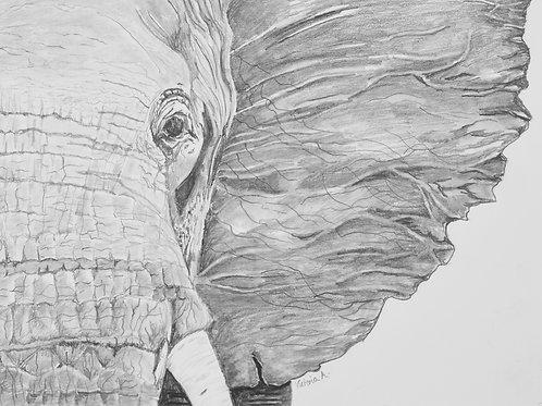 An Elephants Closeness - Canvas print
