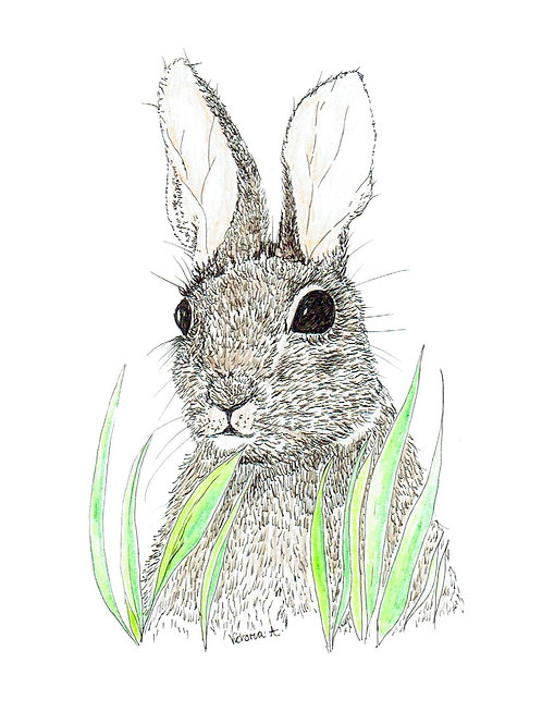 Bunny in Grass - Canvas prints