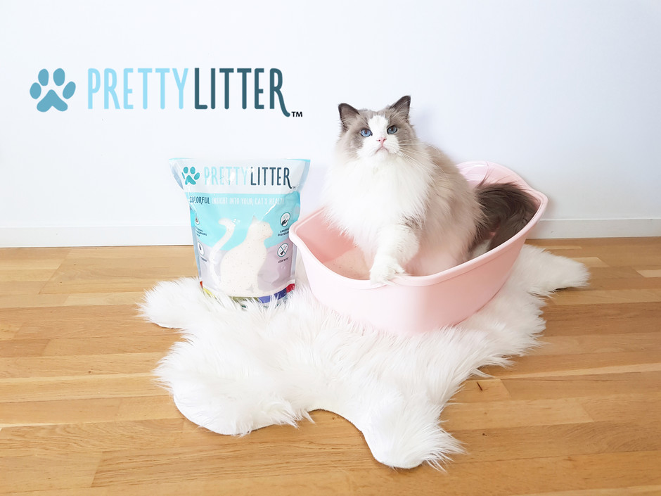 Product Review - PrettyLitter™