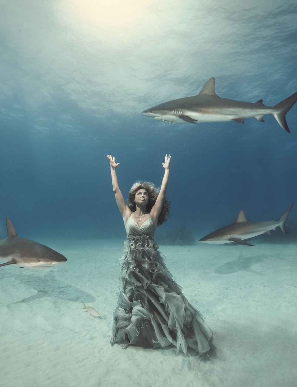 First lady of the sharks