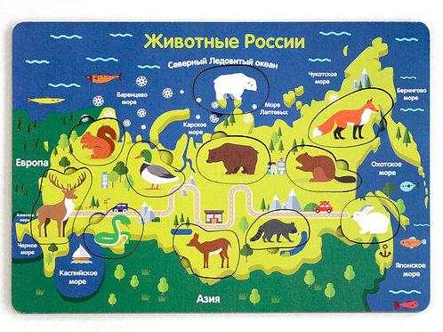 """Рамка-вкладка """"Животные России"""""""