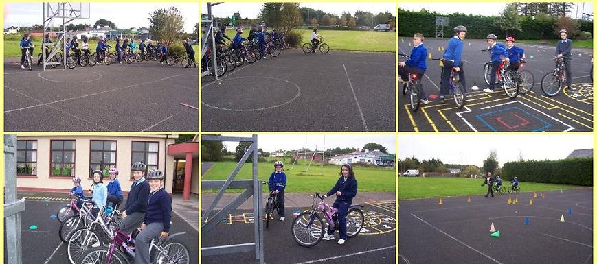 bicycle5.jpg