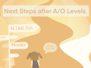 Crossroads | Next steps after A-Levels, where should I go?