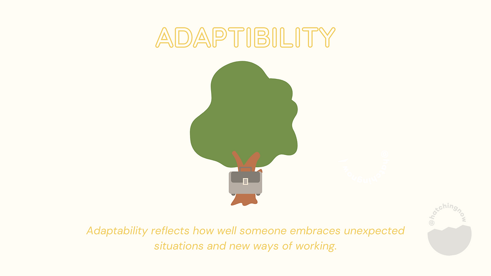 Adaptability soft skills