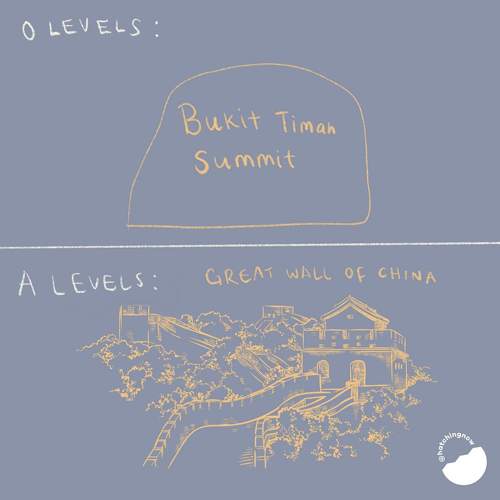 O level vs A level